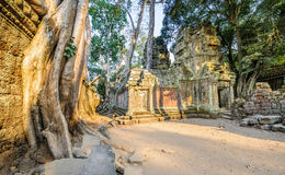 Angkor wat 39 Stock Photo