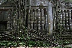 Angkor Wat ruin Stock Images