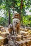 Angkor Wat Ruinen im Dschungel lizenzfreie stockfotos