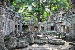 Angkor Wat Ruins. Ruins of Ta Prohm Temple in the Historic Angkor Wat Complex in Cambodia Royalty Free Stock Images