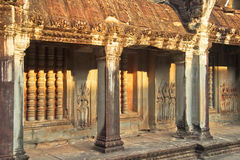 Angkor Wat ruiny w dżungli Obrazy Stock
