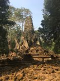 Angkor Wat in Siem Reap, Cambodia. Ancient ruins of Preah Palilay Khmer stone temple overgrown with the roots and giant trees stock image