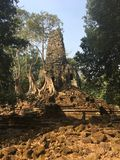 Angkor Wat in Siem Reap, Cambodia. Ancient ruins of Preah Palilay Khmer stone temple overgrown with the roots and giant trees Stock Photo