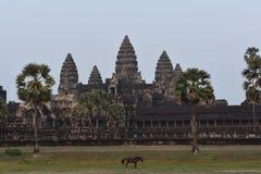 Angkor Wat arkivbild