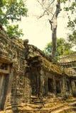 Angkor Wat Tempel En khmercivilisation för den cambodia för angkoren skördar banteay lotuses laken siemsreytempelet Turism i Camb Royaltyfri Fotografi
