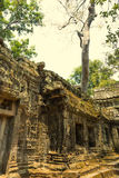 Angkor Wat Tempel Khmer beschaving Siem oogst Angkor Toerisme in Kambodja Royalty-vrije Stock Fotografie