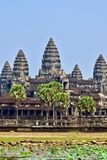Angkor Wat Temple in Cambodia royalty free stock image