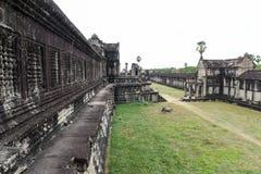 Angkor Wat Temple chez Siem Reap, Cambodge Photos libres de droits
