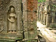 Angkor wat temple hallway asparas cambodia Royalty Free Stock Photo