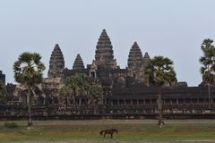 Angkor Wat стоковая фотография