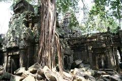 Angkor Watt complex temple Royalty Free Stock Photos