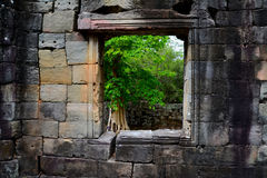 Angkor window Royalty Free Stock Images