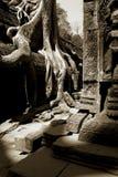 angkorbuddhismtempel royaltyfri bild