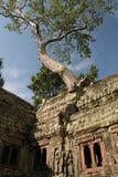 angkorcambodia thom Arkivbild