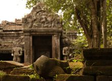 Angkorian temple in the jungle Stock Image