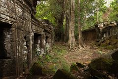 Angkorian temple in the jungle Stock Photos