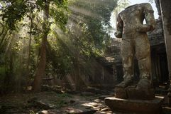 Angkorian temple in the jungle Stock Images