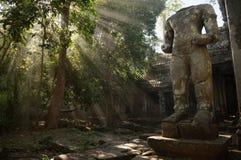 Angkoriantempel in de wildernis Stock Afbeeldingen