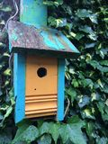 Angle bird house blue orange peeling paint ivy green texture Stock Photography