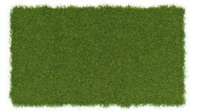 Angle de vue supérieure de pré d'herbe verte Photo libre de droits