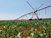 Angle faible des tuyaux d'acier et des poutres du système d'arrosage au-dessus des champs de maïs photographie stock