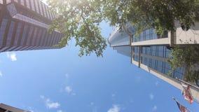 Angle faible du centre de Tampa banque de vidéos
