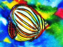 Angel Fish watercolor with water bubbles Stock Photo