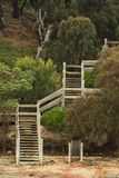 Angle staircase in forest Royalty Free Stock Images