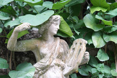 Angle stone sculpture decoration item in the garden with caladiu Royalty Free Stock Image