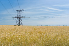 Angle strain transmission tower. In wheat field in Ukraine royalty free stock photos