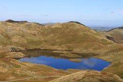 Angle tarn och Angletarn pikes, Lakeområde Fotografering för Bildbyråer