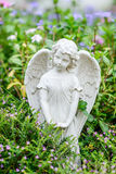 Angle wing in garden. Royalty Free Stock Photos
