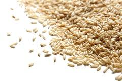 angled коричневая изолированная белизна взгляда риса стоковые изображения