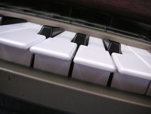 Angled keyboard. Keyboard of a synthesizer set at an abstract angle Royalty Free Stock Image