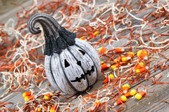 Angled scary black and white Halloween pumpkin on rustic wood Stock Images