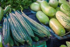 Angled and smooth gourd vegetables are placed on plastic baskets. At Thailand local market ready to be sold in evening time Stock Image