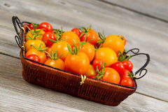 Angled View of Garden Fresh Tomatoes in basket Stock Photos