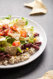 Angled view of Taco Salad Royalty Free Stock Images