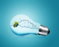 Anglefish jumping into light bulb Stock Images