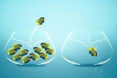Anglefish jumping to Big bowl Stock Photography