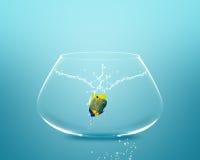 Anglefish jumping to Big bowl Royalty Free Stock Image