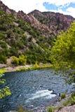 Angler auf dem Gunnison Stockbilder