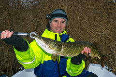 Angler with autumn pike trophy Royalty Free Stock Photography