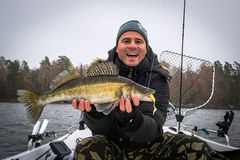 Angler with autumn walleye. Extremely happy angler with autumn walleye fish royalty free stock image