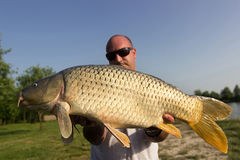 Angler with carp fishing trophy Carp and Fisherman, Carp fishing trophy Royalty Free Stock Photo