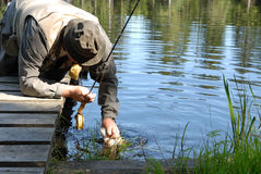 Angler with a catch. Angler kneeling on a bridge to secure his catch Stock Image