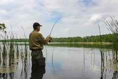 Angler stock photos