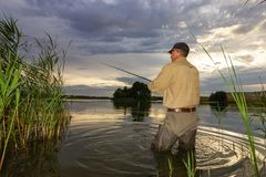 Angler royalty free stock photo