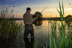 Angler royalty free stock photos