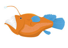 Angler fish  illustration isolated on a white background Royalty Free Stock Photography